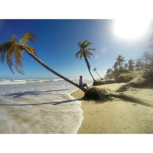 praia mangue seco