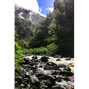 trilha+rio+boi