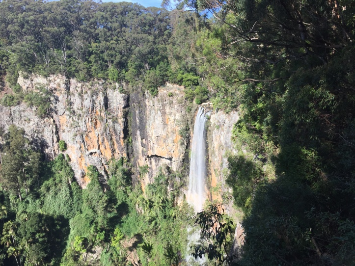 purling+brook+falls+springbrook