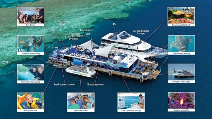 reefworld+cruisewhitsundays
