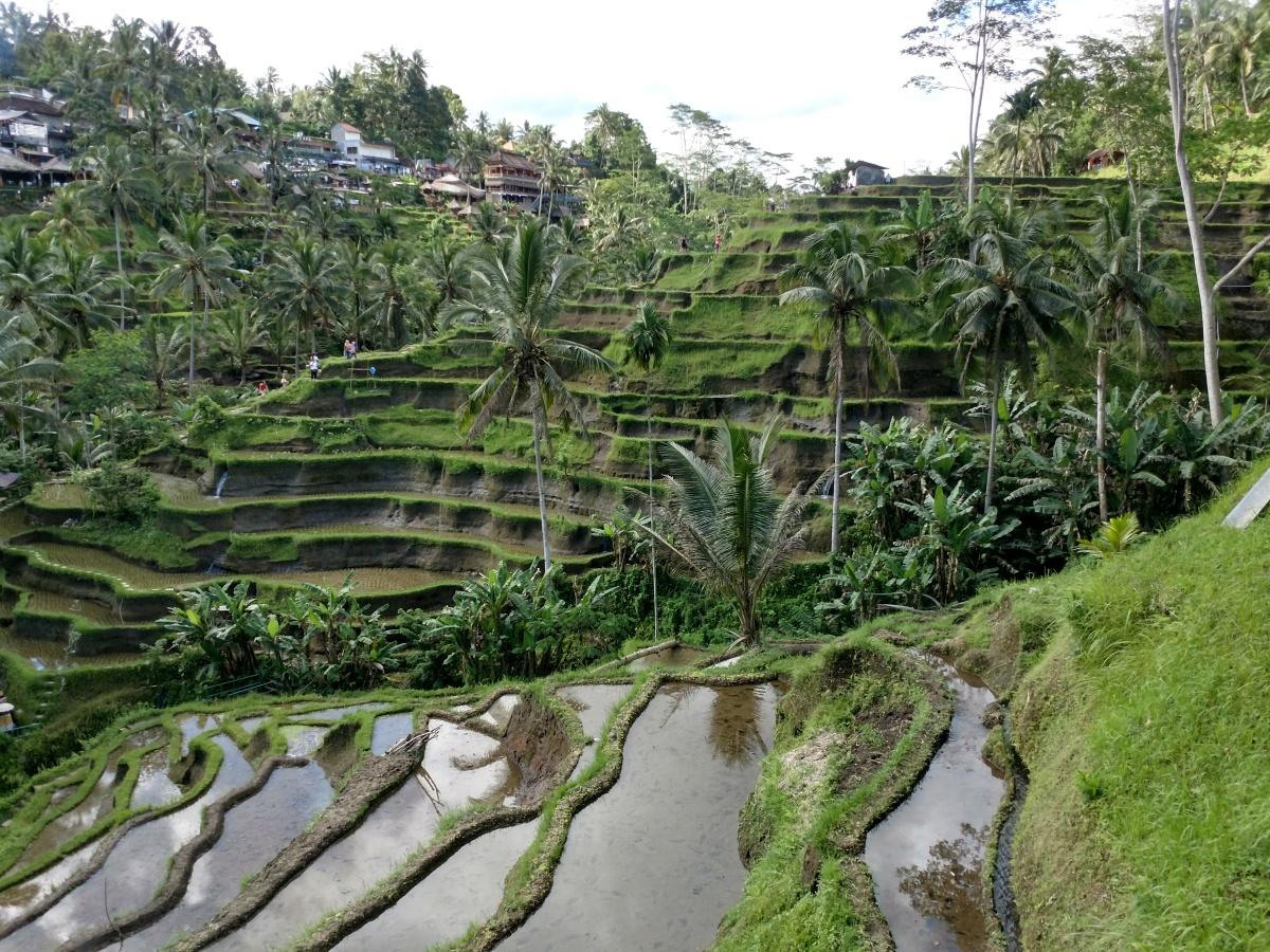 Bali (Indonésia) | Roteiro de 10-15 dias