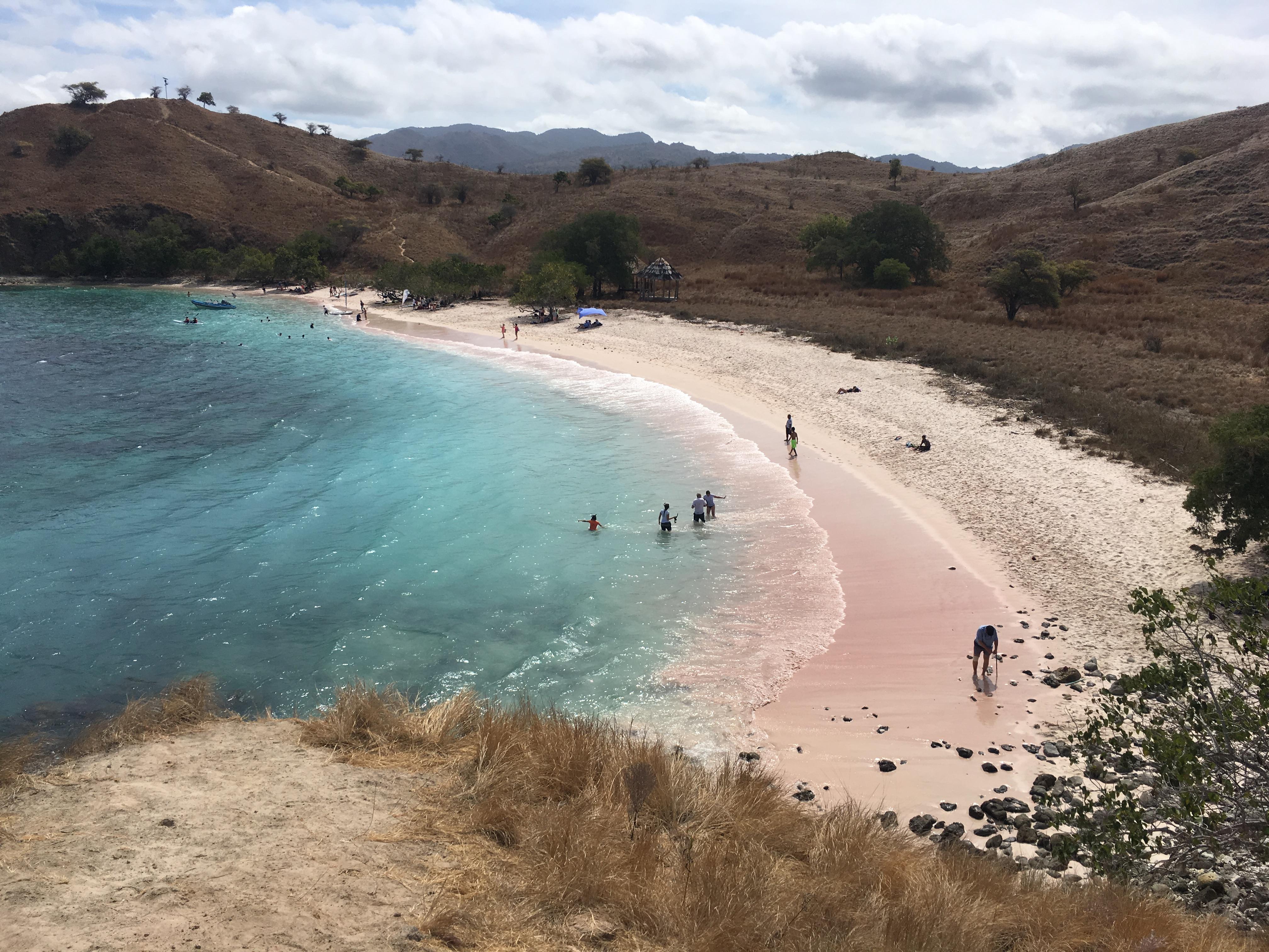 pink+beach+komodo