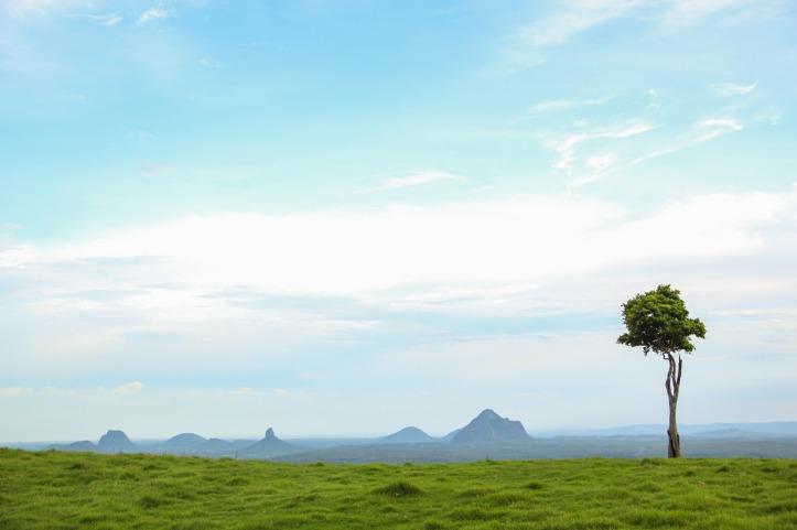 one-tree-hill-maleny-sunshine-coast